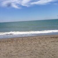 Photo prise au Playa del parque natural de la desembocadura del Guadalhorce par Alejandro D. le7/6/2014