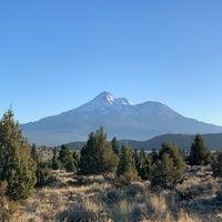 Mt Shasta dating