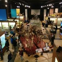 Das Foto wurde bei University of Michigan Museum of Natural History von Dino W. am 12/30/2017 aufgenommen