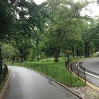 7/1/2013 tarihinde Stephanie Paige M.ziyaretçi tarafından Central Park'de çekilen fotoğraf