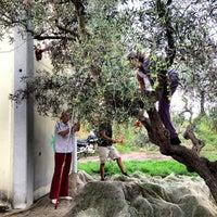 Foto scattata a Camping Valle Santa Maria da Gabriele R. il 10/24/2012