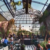 Photos At Azotea Acapulco Restaurant In Roma Norte