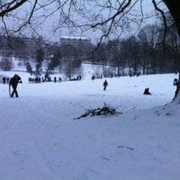 1/20/2013にCheryl M.がParc de Woluweparkで撮った写真