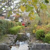 ね 公園 池 が つり