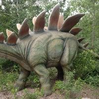 5/28/2013にJoe F.がField Station: Dinosaursで撮った写真