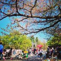 4/7/2013 tarihinde Yuriko O.ziyaretçi tarafından Ueno Park'de çekilen fotoğraf