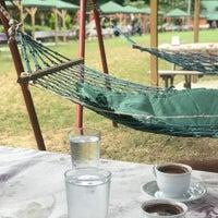 8/11/2018に👸🏼Şiℓâℓ🌼がPolonezköy Yıldız Piknik Parkıで撮った写真