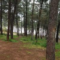 4/14/2013 tarihinde 🏃Eyûp Ö.ziyaretçi tarafından Aydos Ormanı Göl Kenarı'de çekilen fotoğraf