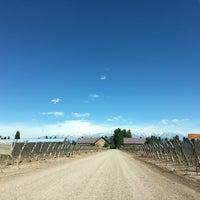 รูปภาพถ่ายที่ Dominio del Plata Winery โดย Adolfo A. เมื่อ 10/12/2016