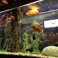 Снимок сделан в Якитория пользователем Marina S. 11/22/2012