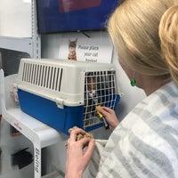 Photo prise au Parkside Veterinary Centre par George K. le6/4/2018