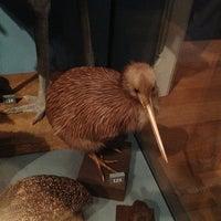 Photo prise au Royal Albert Memorial Museum & Art Gallery par Simon W. le12/21/2012