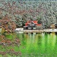 Снимок сделан в Gölcük Tabiat Parkı пользователем Emre S. 2/18/2013