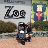 12/29/2012 tarihinde Rachel E.ziyaretçi tarafından Wellington Zoo'de çekilen fotoğraf