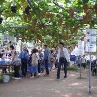 4/30/2016에 坂上ぶどう園님이 坂上ぶどう園에서 찍은 사진