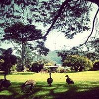 Снимок сделан в San Francisco Botanical Garden пользователем Ehren D. 10/2/2012