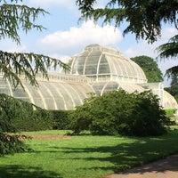 6/1/2014 tarihinde Jana S.ziyaretçi tarafından Royal Botanic Gardens'de çekilen fotoğraf
