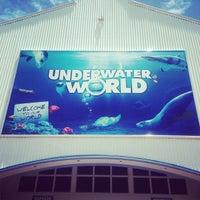 Foto tomada en Underwater World por Jacky C. el 1/22/2013