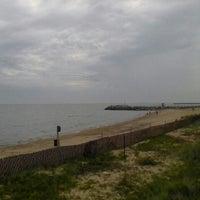 Evanston Dog Beach - Beach in Evanston