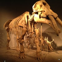 10/14/2012にEric G.がDenver Museum of Nature and Scienceで撮った写真