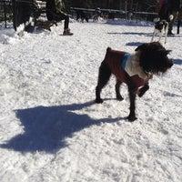 2/9/2013 tarihinde Kevin O.ziyaretçi tarafından Tompkins Square Park Dog Run'de çekilen fotoğraf