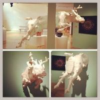Foto diambil di Mingei International Museum oleh Dora S. pada 6/26/2013