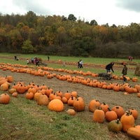 Schramm Farms Orchards Farm In Jeannette