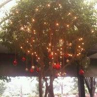รูปภาพถ่ายที่ Downtown Bistro โดย rurymarisa k. เมื่อ 12/20/2012