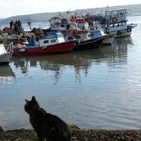 12/2/2012 tarihinde Kemal O.ziyaretçi tarafından Garipçe Aydın Balık'de çekilen fotoğraf