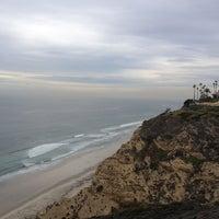 11/15/2012にRobin L.がLa Jolla Cliffsで撮った写真