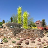 Photo prise au Desert Botanical Garden par Alan W. le3/31/2013