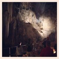 7/24/2013 tarihinde California Travel Tips - V.ziyaretçi tarafından Lake Shasta Caverns'de çekilen fotoğraf