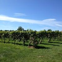 8/25/2013にRebeccaがCrossing Vineyards and Wineryで撮った写真