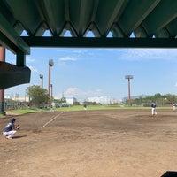 場 夢の島 野球