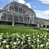 4/21/2013 tarihinde Vit H.ziyaretçi tarafından Royal Botanic Gardens'de çekilen fotoğraf