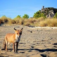 Foto scattata a Argentario Golf Resort & Spa da Argentario R. il 8/20/2015