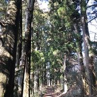 2/24/2018にむさしが箱根旧街道 杉並木で撮った写真