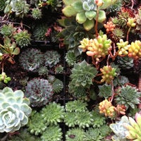Photo prise au Flora Grubb Gardens par Ching H. le12/15/2012