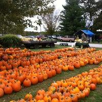 Vogt farm pumpkin festival marks 20th year | business.