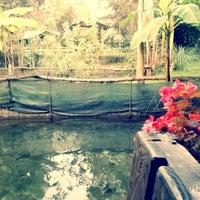 10/12/2012 tarihinde bahar o.ziyaretçi tarafından Heinz'de çekilen fotoğraf