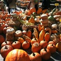 Снимок сделан в Union Square Greenmarket пользователем Melody F. 10/13/2012