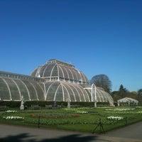 4/20/2013 tarihinde riccardo p.ziyaretçi tarafından Royal Botanic Gardens'de çekilen fotoğraf