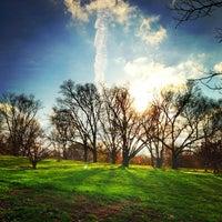Снимок сделан в Arnold Arboretum пользователем Steve G. 11/12/2012