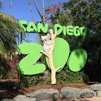 5/14/2013 tarihinde Antoineziyaretçi tarafından San Diego Hayvanat Bahçesi'de çekilen fotoğraf