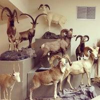 4/13/2013 tarihinde Roger Erik T.ziyaretçi tarafından Las Vegas Natural History Museum'de çekilen fotoğraf