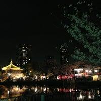 3/28/2013 tarihinde GeunBirdziyaretçi tarafından Ueno Park'de çekilen fotoğraf