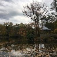 Das Foto wurde bei Gaststätte Waldsee von Borja am 10/21/2017 aufgenommen