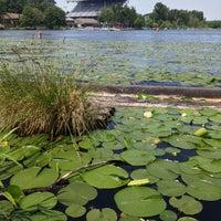 Photo prise au Arboretum Waterfront Trail par Annamaria T. le6/15/2013