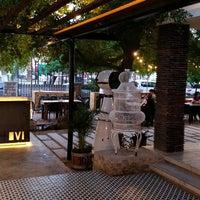 Fauna Tasting Room Bar In Hermosillo