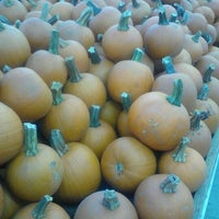 10/20/2012에 Heather H.님이 Nick's Garden Center & Farm Market에서 찍은 사진
